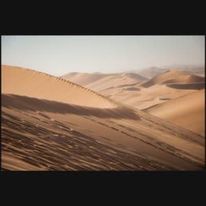 Majestic Sands